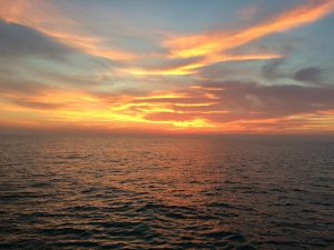 New Grant Opportunities from MSDS Marine